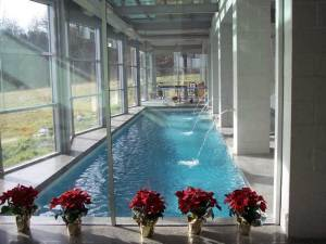 Designing an indoor pool red square pools 702 530 7331 for Indoor pool dehumidification design