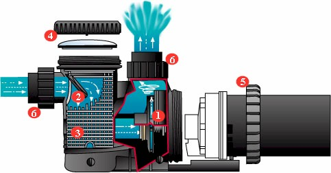 How To Trouble Shoot And Repair Pool Pumps Recommended